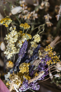Close up dried chamomile and lavender bunch