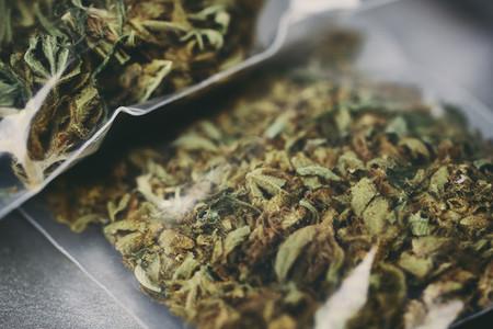 Close up marijuana in plastic bags