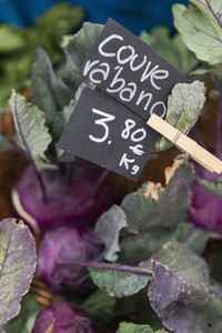 Close up Portuguese cabbage kale with price sign