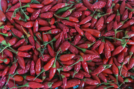 Full frame abundance of vibrant  red  organic chili peppers