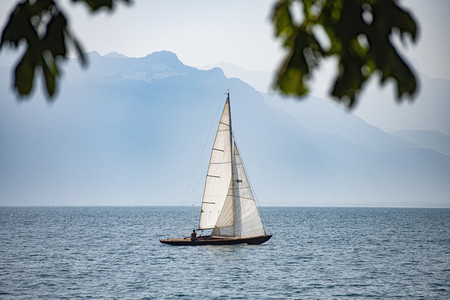 Sailboat on sunny  tranquil Lake Geneva  Cully  Vaud  Switzerland