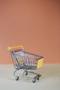 Tiny toy shopping cart 04