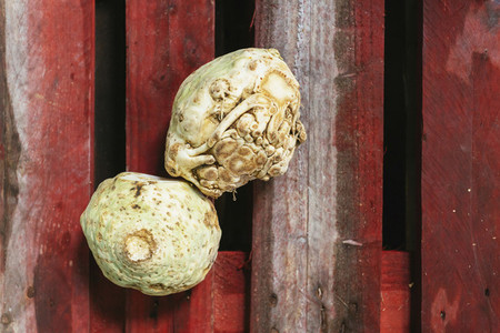 View from above organic celery root on red wooden slats