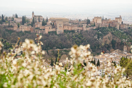 View of the Alhambra of Granada from Cerro de San Miguel