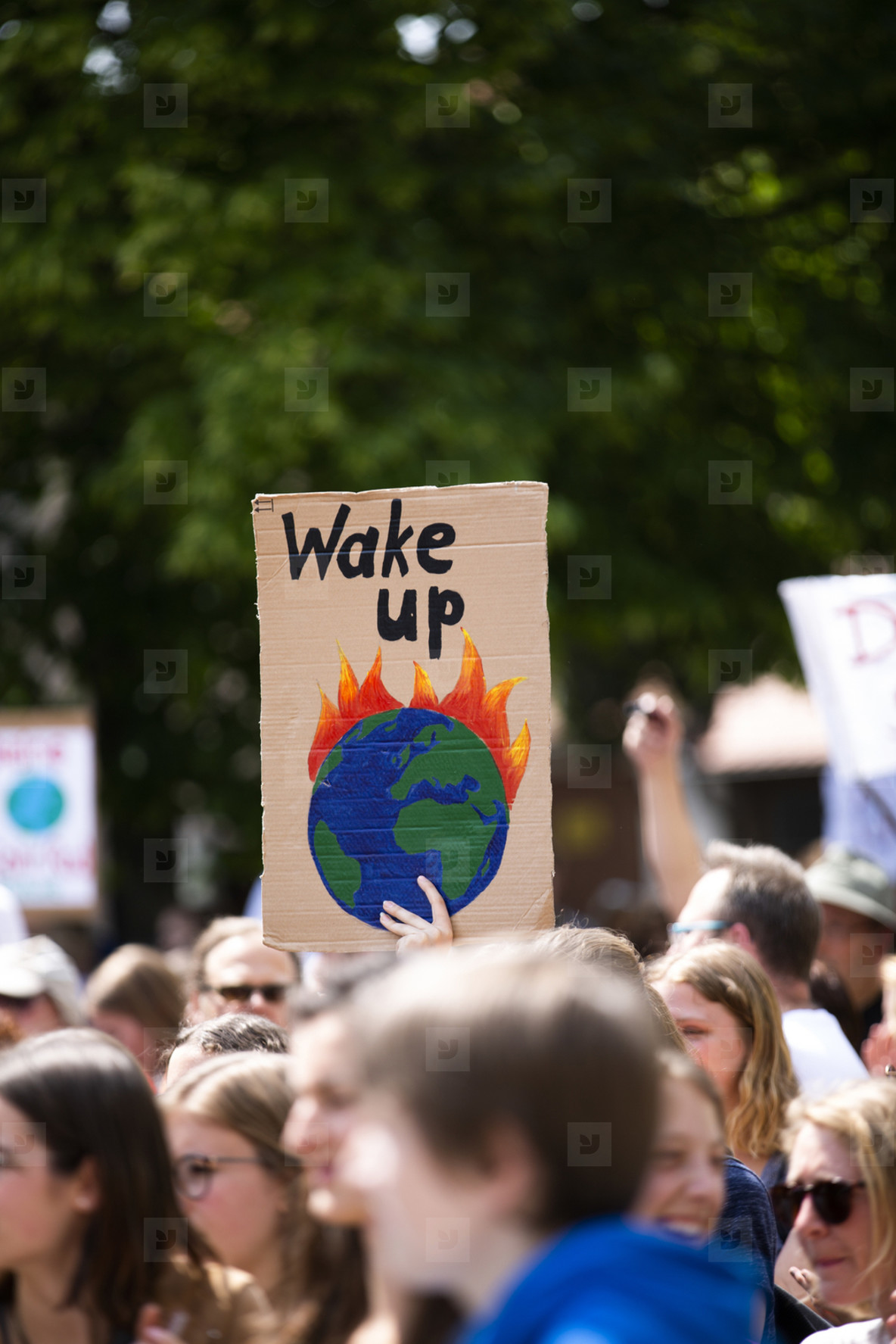 Fridays for future climate