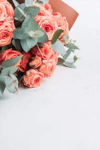 Pink roses beautiful spring bouquet on a white background  The concept of greetings and wedding  Copy space