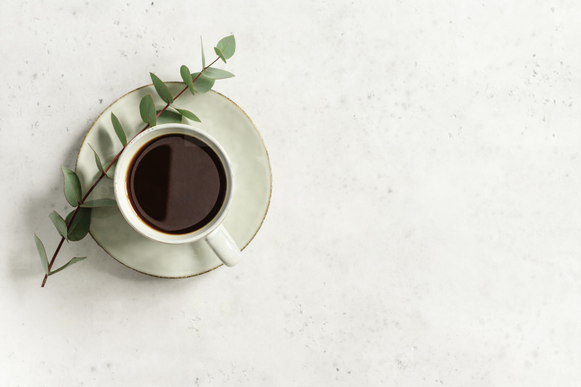 Cup of black coffee on a white textured table with a branch of eucalyptus  Top view  minimalist style  copy space