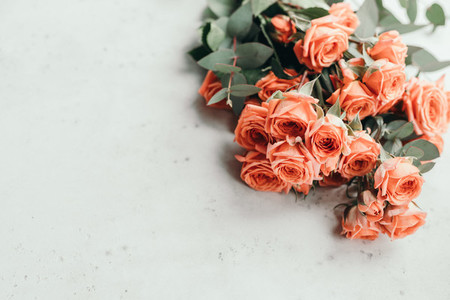 Coral roses beautiful spring bouquet on a white background The concept of greetings and wedding Copy space