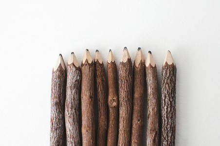 Wooden Pencils from the Bottom