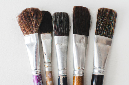 Old Paintbrush Collection Wide