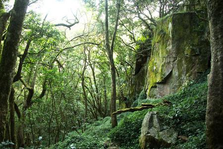 Kaapschehoop Hiking Trail