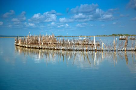 Kosi Bay Fish Traps