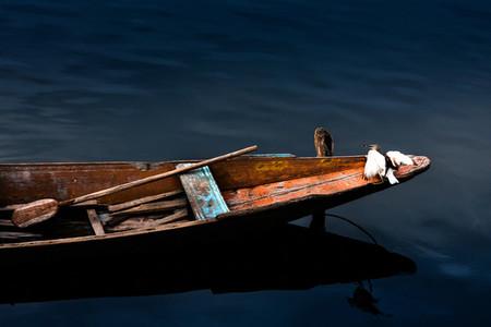 Fishing boat floating