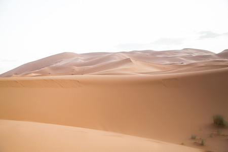 Sahara Desert Morocco 05