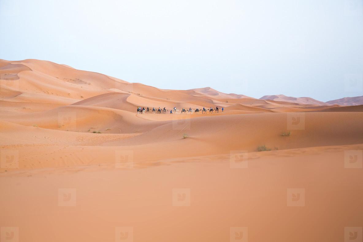 Sahara Desert  Morocco 06