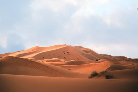 Sahara Desert  Morocco 07