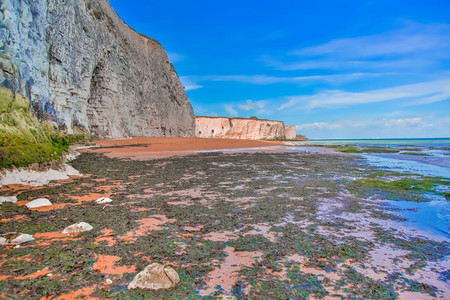 White Cliffs Botany Bay England 3