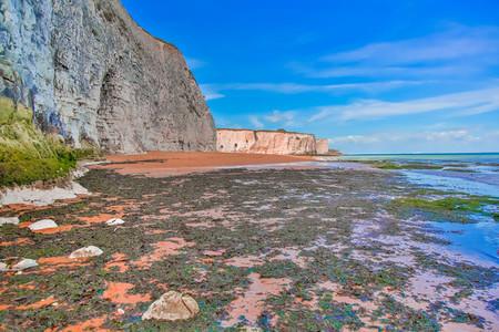 White Cliffs Botany Bay England 3