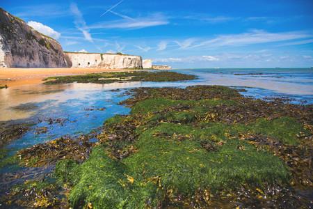 White Cliffs Botany Bay England 6