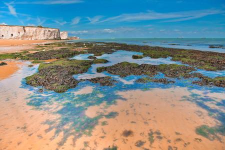 White Cliffs Botany Bay England 7