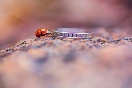 Wedding Ring Collection 9