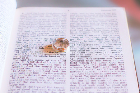 Wedding rings on the bible