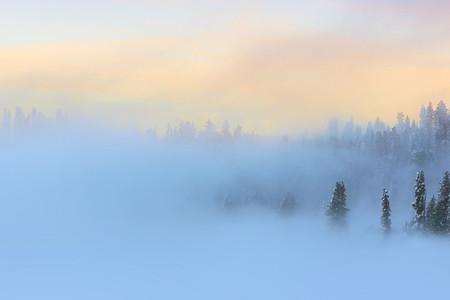 Winter Wonderland 01