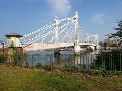 View of the Albert bridge  London  England