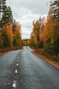 Beautiful scene of highway through Autumn forest