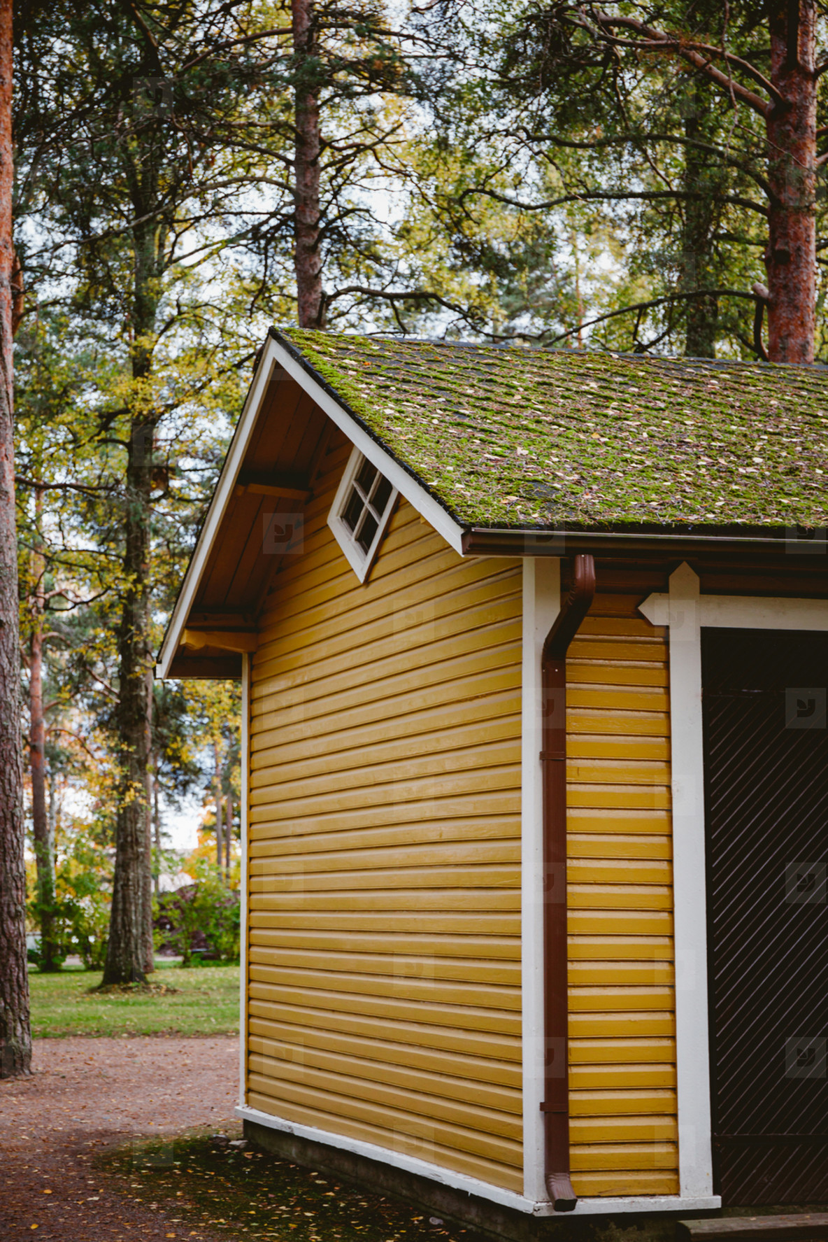 Fragment of wooden finnish yellow house in a forest