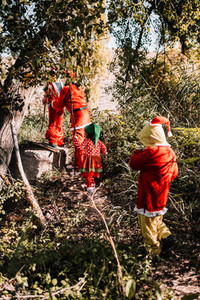 Group of people disguised to christmas on the forest