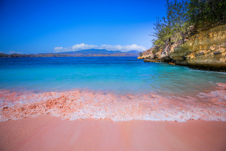 Pink Beaches of Indonesia 5