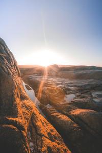 Cape Columbine  South Africa 14