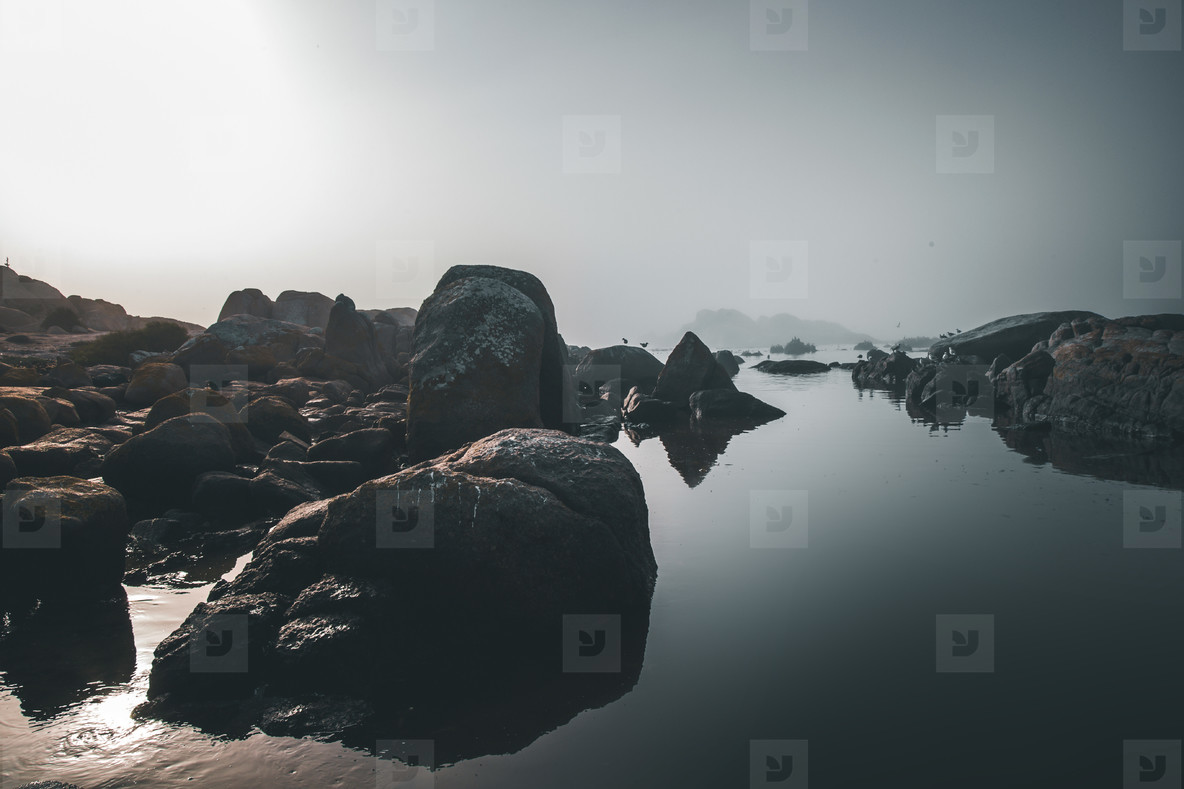 Cape Columbine  South Africa 12