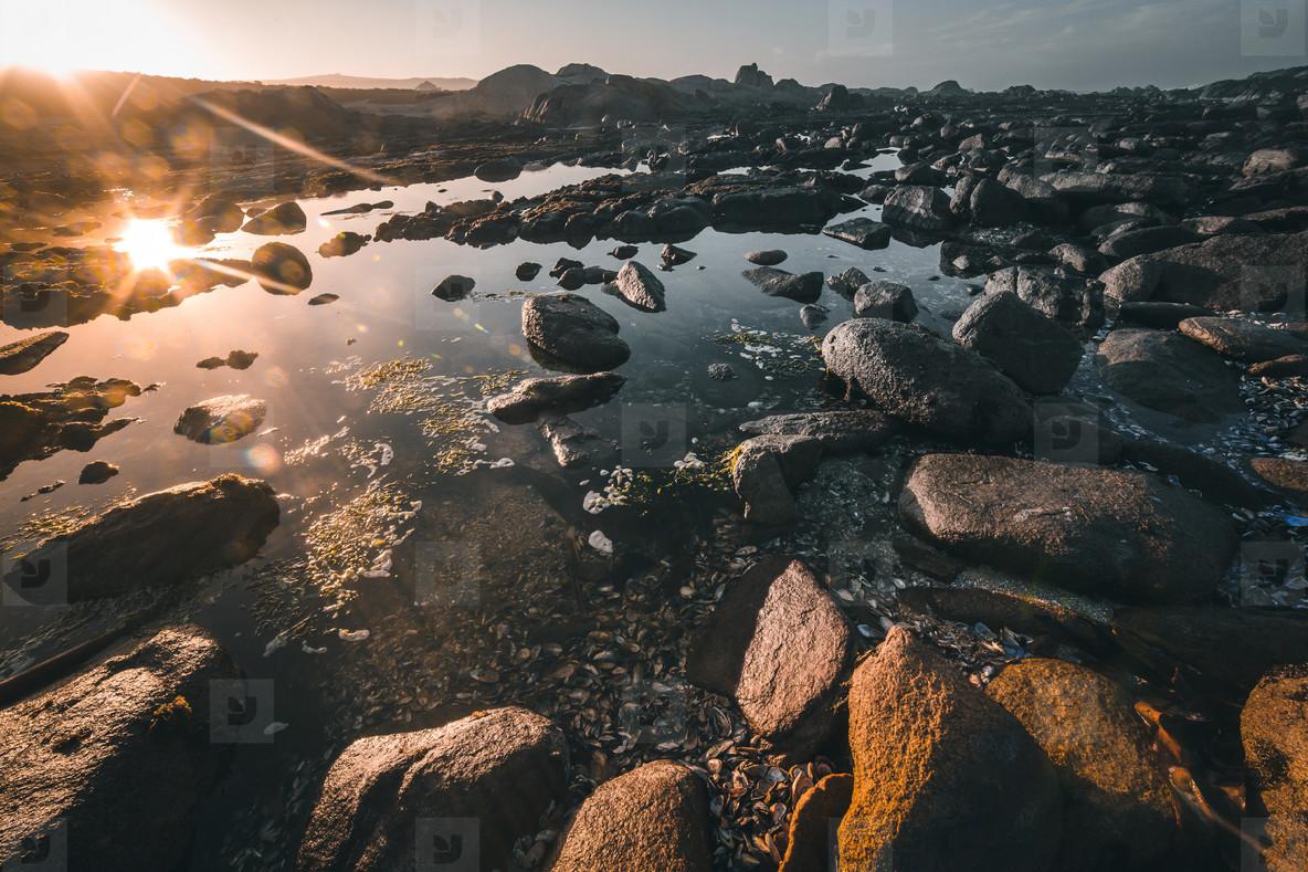 Cape Columbine  South Africa 6