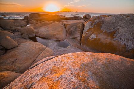 Cape Columbine  South Africa 3