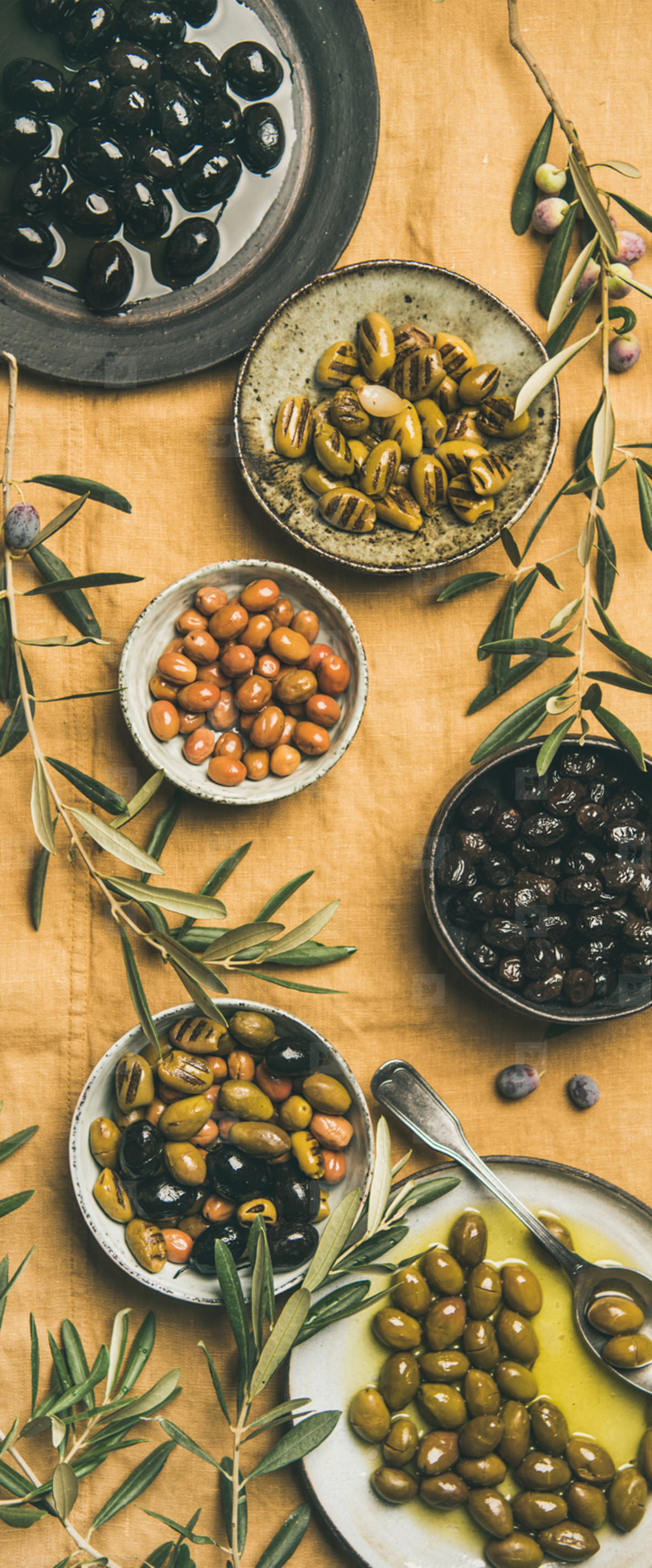 Mediterranean pickled olives and olive tree branches  yellow background