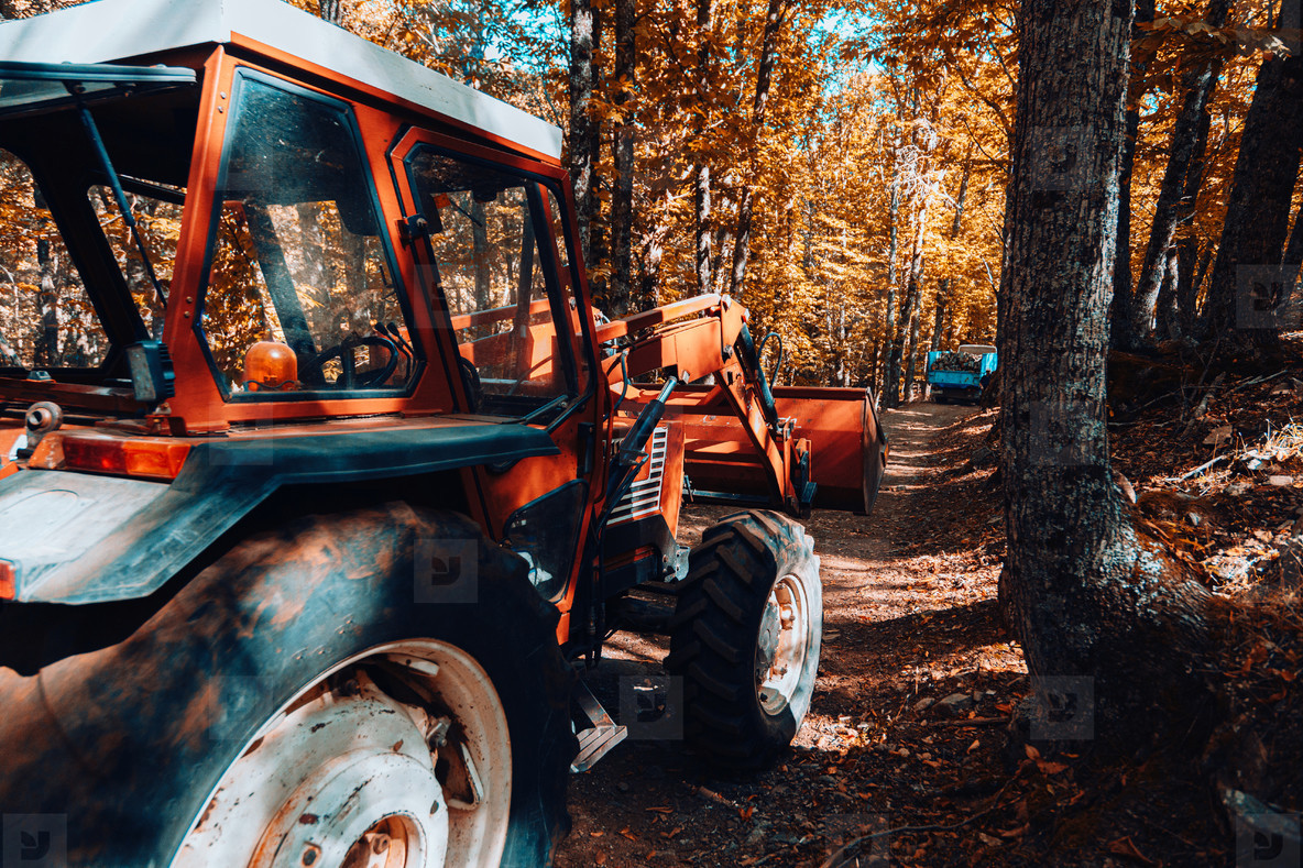 Tractor in autumn chestnut forest in Spain with warm colors