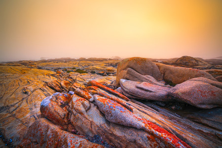 Beaches of South Africa 1