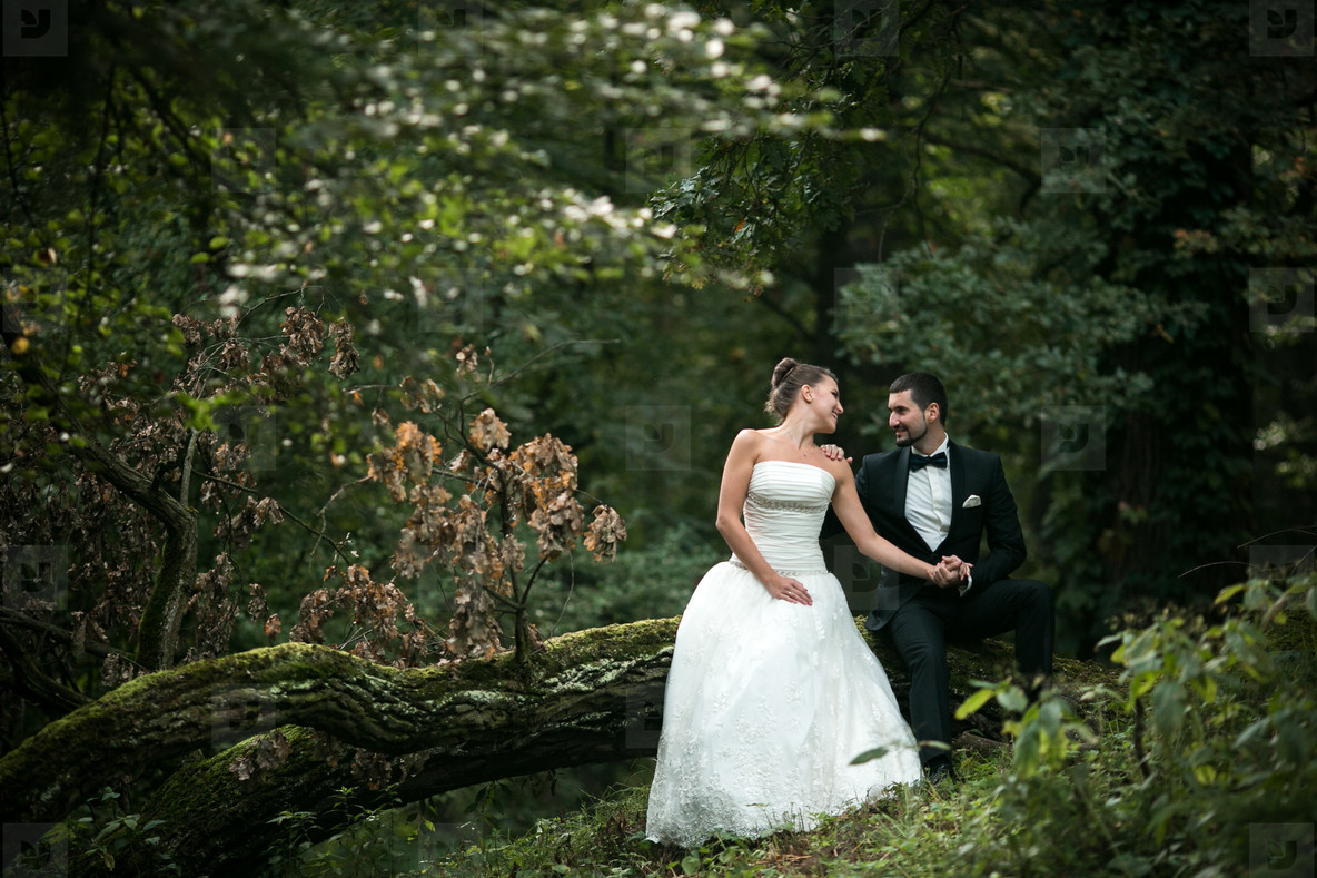 Beautiful wedding couple sitting in the woods