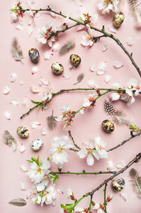 Easter background with eggs  almond flowers and feathers  vertical composition