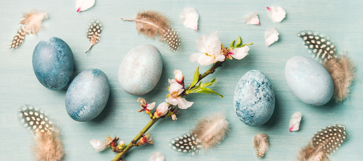 Painted eggs for Easter  feathers  blooming almond flowers  wide composition