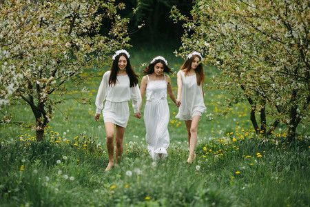 Three charming girls  in a garden