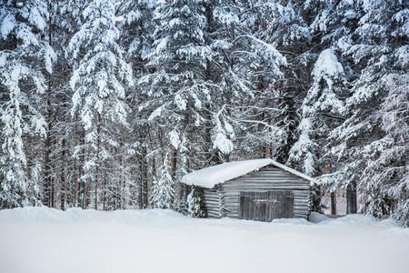 Lapland Finland 26