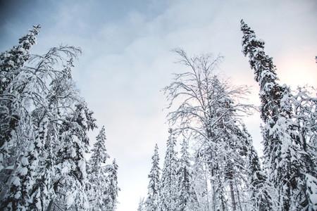 Lapland  Finland 4