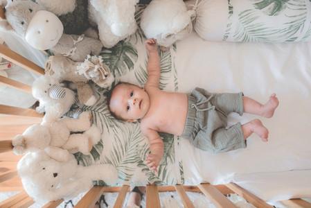 Newborn Collection 42