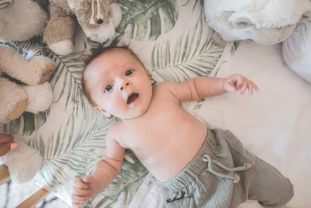 Newborn Collection 43