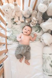 Newborn Collection 44