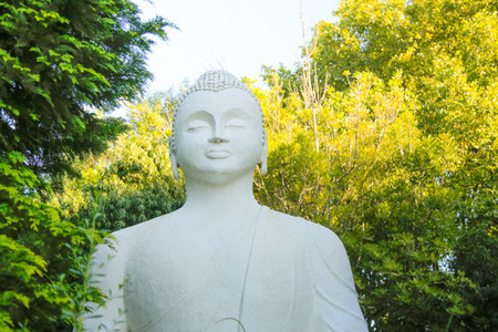 Buddhist Retreat Centre 2