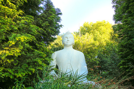 Buddhist Retreat Centre 3